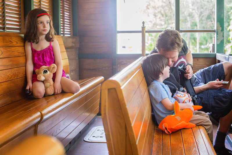 Animal Kingdom Lodge train ride