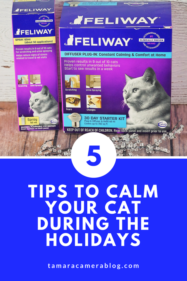 As much as the holidays are joyous, they can be hard for cats - with all the travel and loud noises and house guests. Read 5 tips to calm them! #ad #Feliway