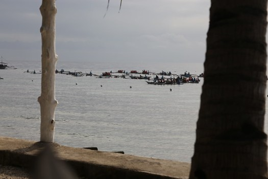 A constant stream of visitors, packed onto crowded boats, head out to see the whale sharks every day