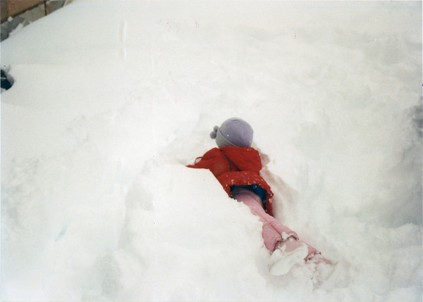 Great Snow of '94 #4