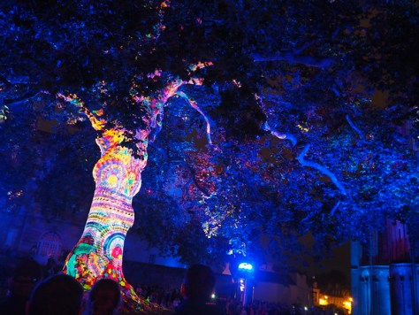 Sound and light projection show on a 1797 tree at Bayeux Cathedral