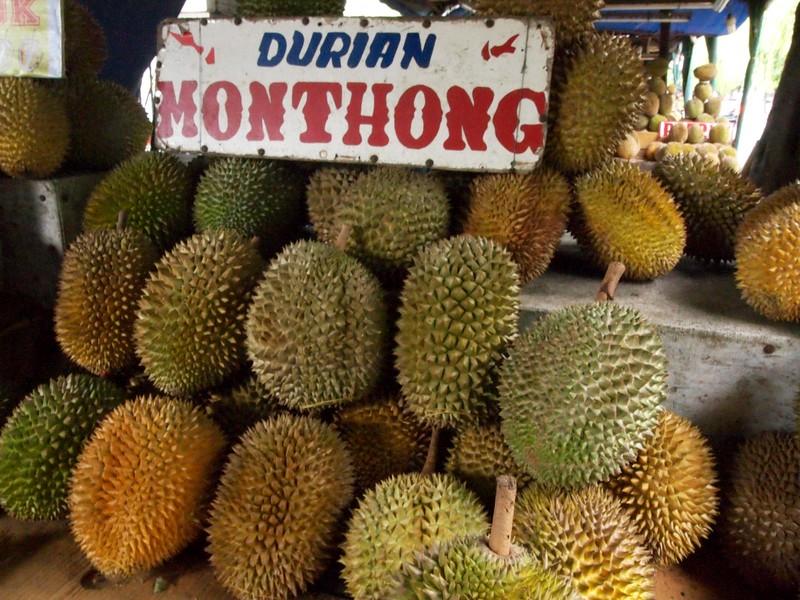 Othong Duren