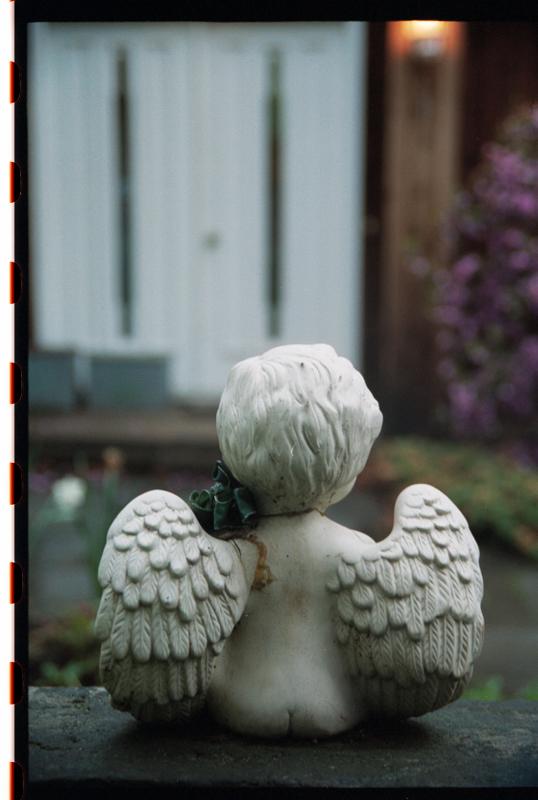 angel statue in garden