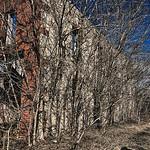 Phillip Bierck Lumber Yard