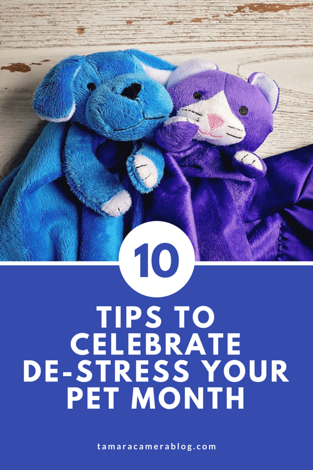 Here are 10 important ways to celebrate De-stress Your Pet Month! And see how ADAPTIL® and FELIWAY® can help! #ad #adaptil #feliway