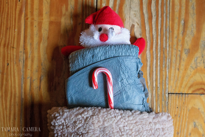 How to Prepare the House for Caregiving This Holiday ...