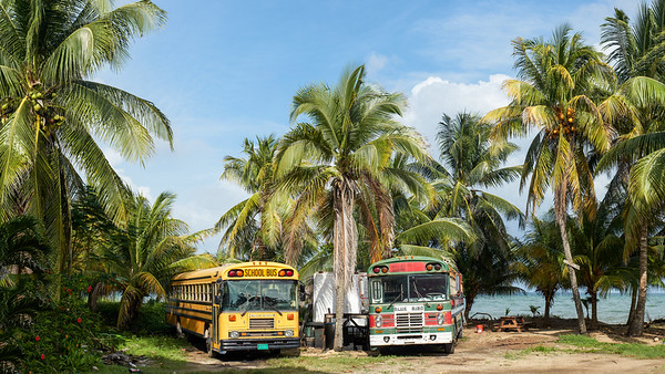 Schoolbus United