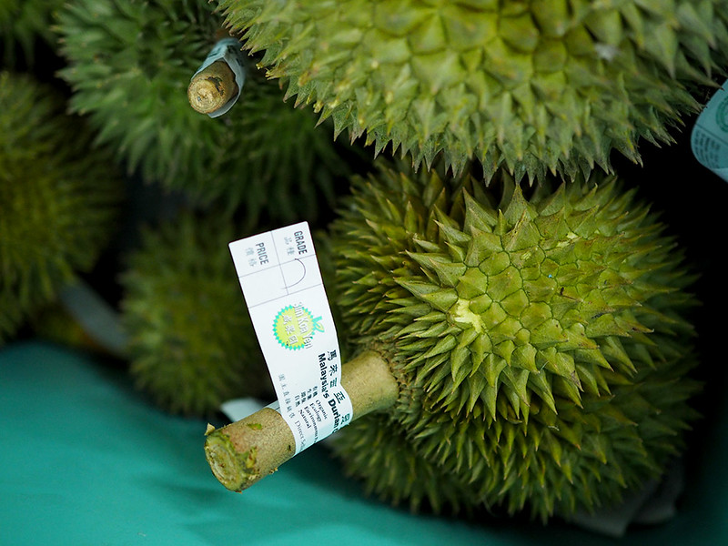 melaka durian farm