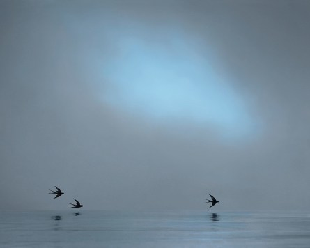 Famous Contemporary Photographers - Didier Massard