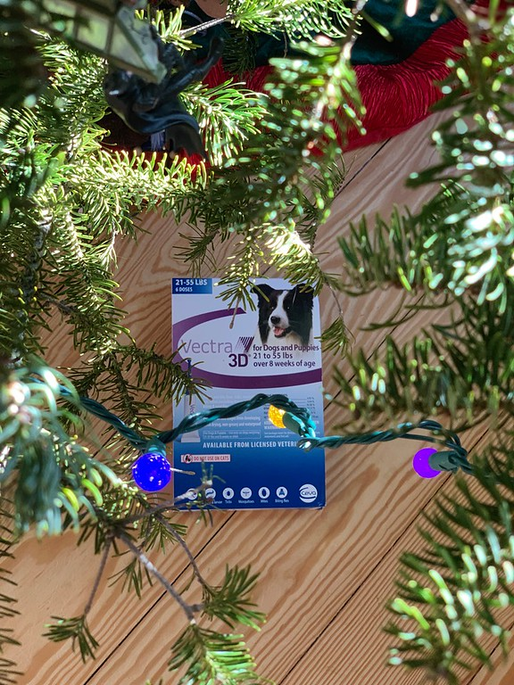 What are the ways in which you protect your dog this holiday season? Here's 5 tips and why it's important to use dog flea and tick control! #ad #Vectra3DDog