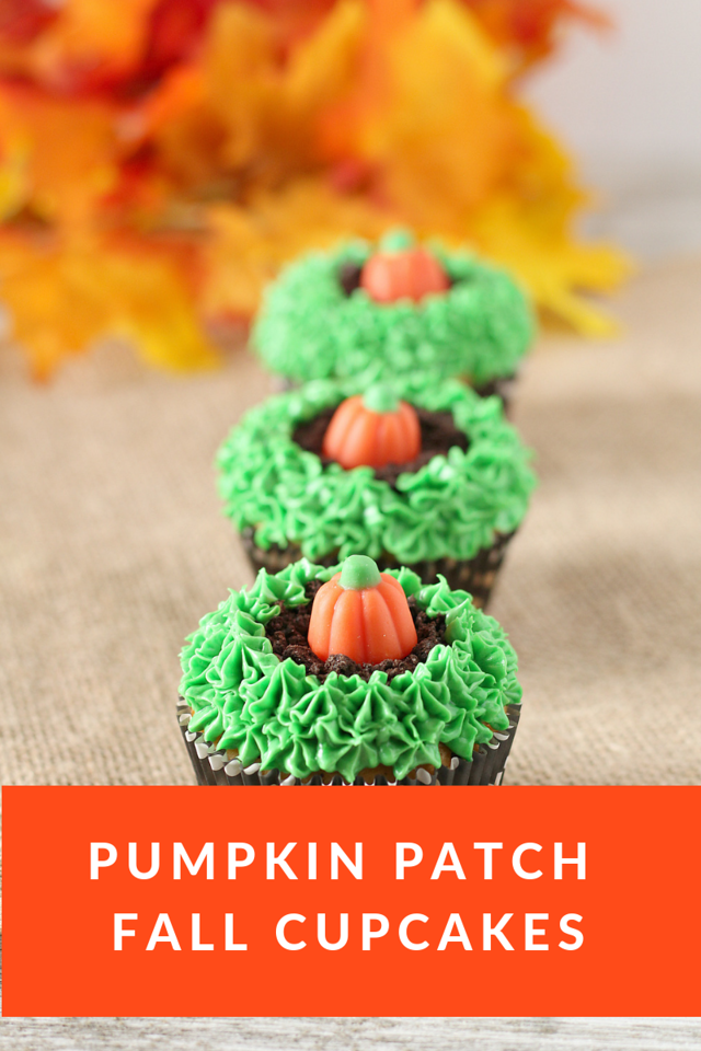 These Pumpkin Patch Fall Cupcakes are the perfect recipe to ring in fall with! The temps are dropping and the fall parties are starting. These will be a hit