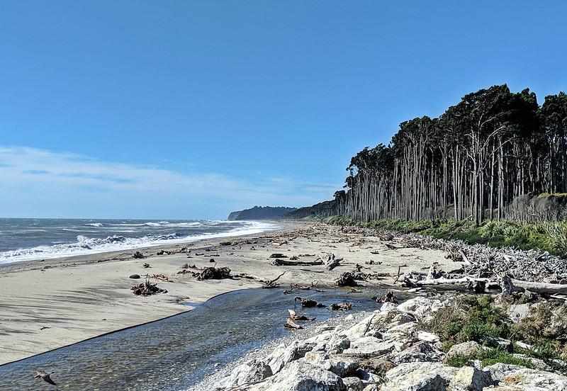 8 Day New Zealand Road Trip - beach near Haast