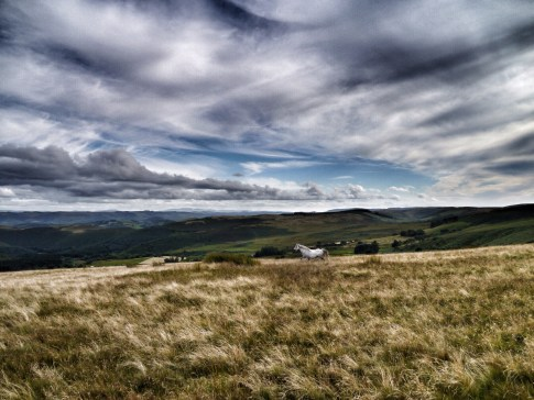Looking into the Upper Estyn from Drum Ddu