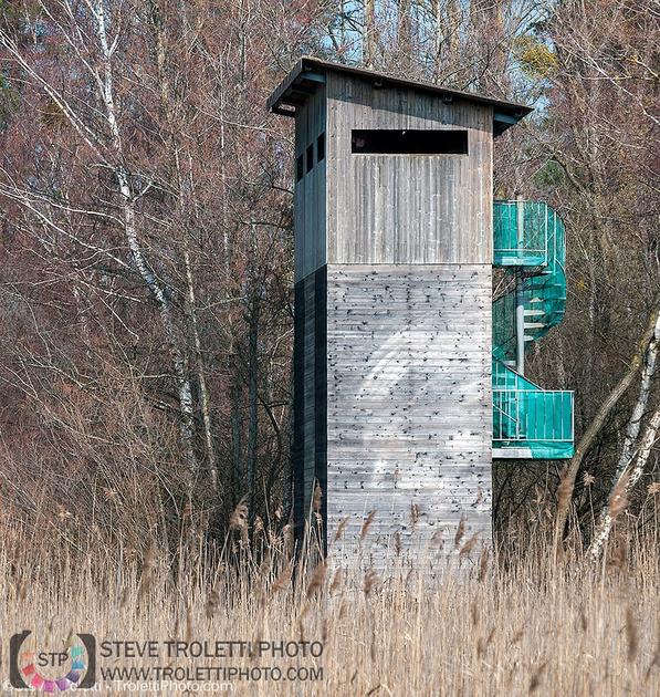 Observation Tower @ Champ-pittet Pro Natura Center