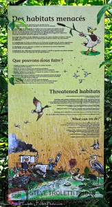 Hypocrisy - Wetland Conservation sign at the Tree House - Montreal Botanical Garden