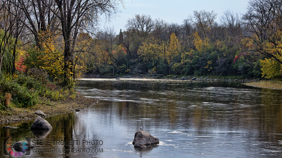 Steve Troletti Photography: PICTURE OF THE DAY / PHOTO DU JOUR &emdash; Fall on the back river / L'automne sur la rivière des prairies