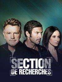 Section De Recherches Saison 14 : section, recherches, saison, Section, Recherches