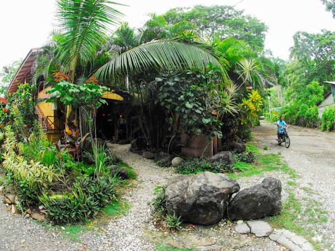 5 Days Budget Yoga Retreat in Costa Rica  BookYogaRetreatscom