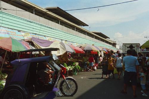 Fish Shop Quezon City
