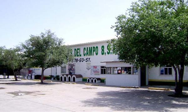 Chihuahua Mexico Bachiniva