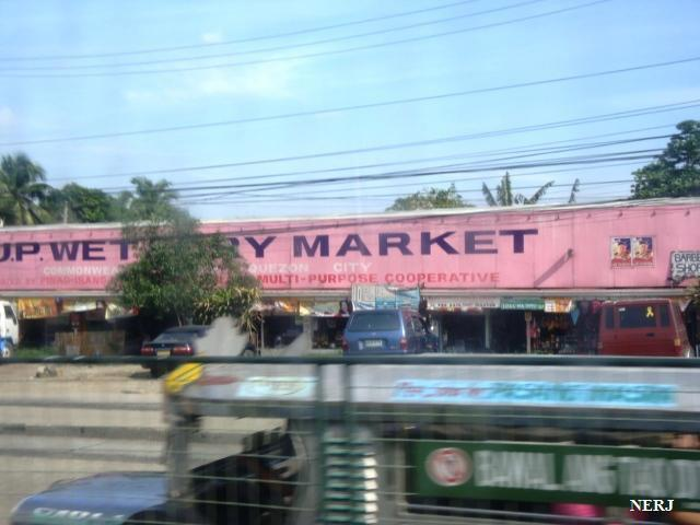 Fish Shop Quezon City
