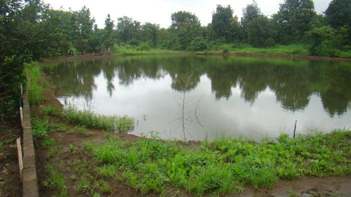 Farm Pond Estimate Maharashtra