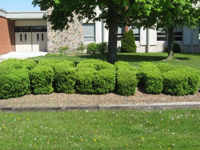 Belle River District High School