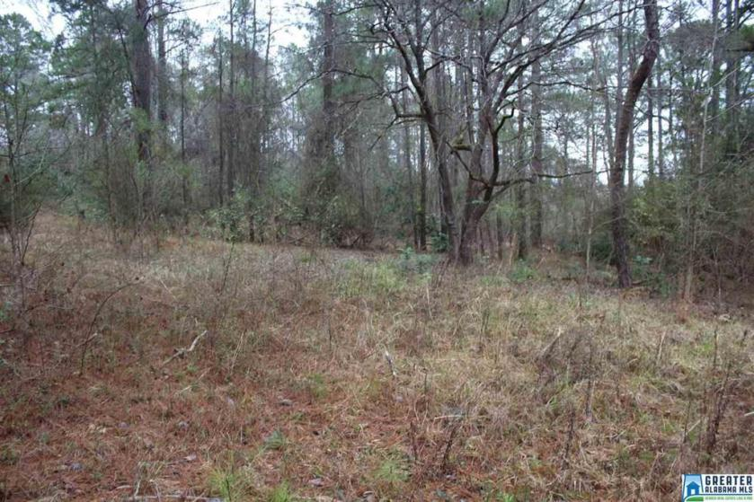 Property for sale at 5151 S Shades Crest Rd Unit 1, Helena,  Alabama 35022