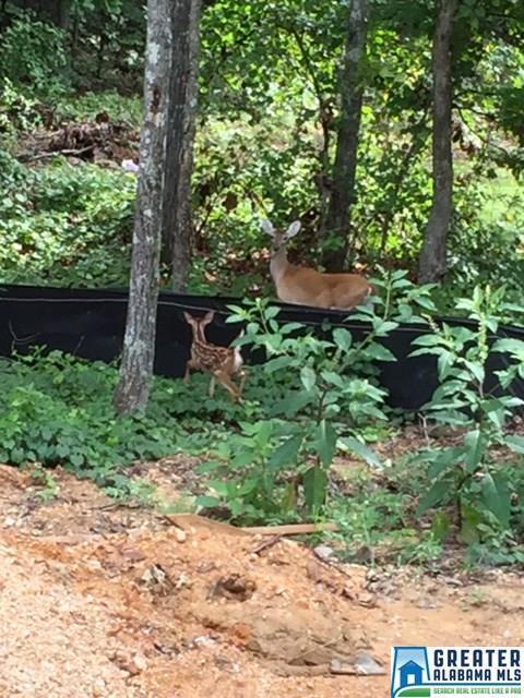Property for sale at 431 Acer Trl Unit 12, Alabaster,  Alabama 35007