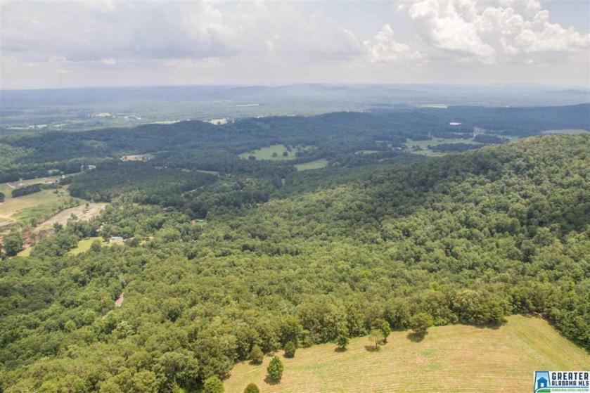 Property for sale at 5480 Co Rd 24, Springville,  Alabama 35146