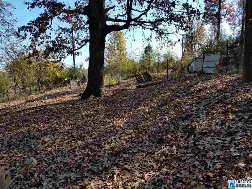 Property for sale at 60 Memory Ln, Alabaster,  Alabama 35007