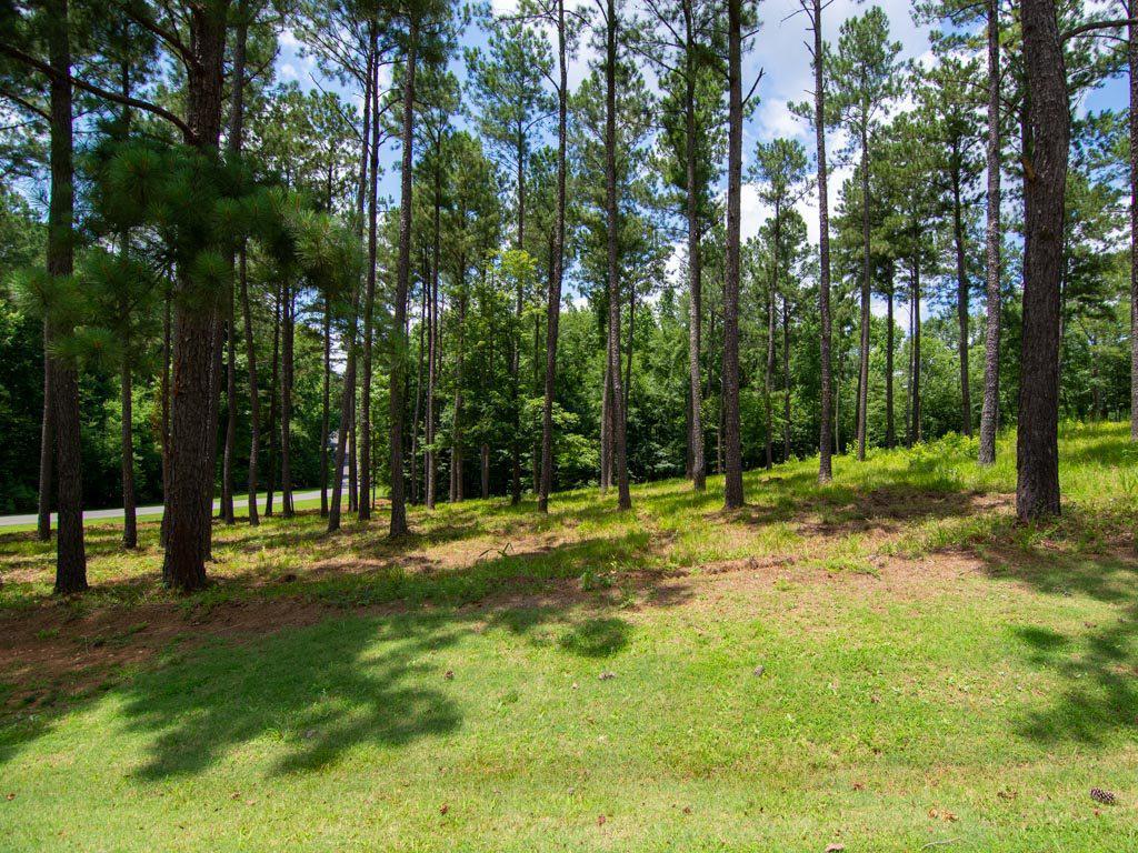 Property for sale at 1110 LONG COVE DRIVE, Greensboro,  Georgia 30642