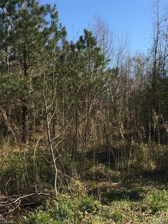 Property for sale at 42 ACR Poplar Branch Road, Poplar Branch,  North Carolina 27965