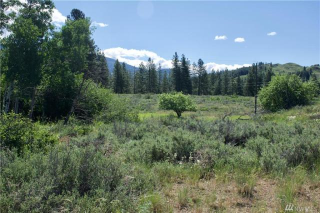 Property for sale at 9 Northcott Rd, Winthrop,  WA 98862