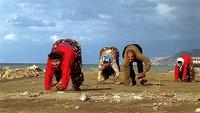 Quadrupedos en Turquía