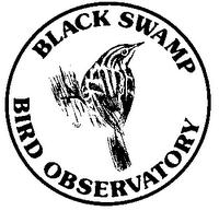 WildBird on the Fly: Blog-erview with Kenn Kaufman