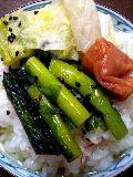 野沢菜と白菜の漬物と梅干のお茶漬け