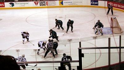 Manitoba Moose Game