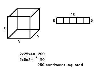 Sargent Park 8-17 Math: Volume and Surface Area Questions