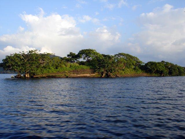 Isla de los Monos