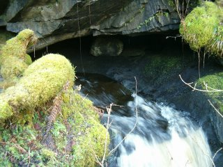 Finchairn River Cave - the resurgence