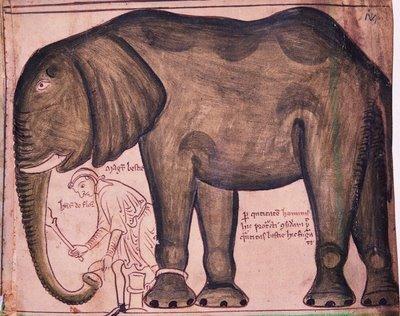 Matthew Paris' drawing of an elephant, 13th Century