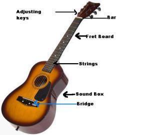 Guitar Info  SEONegativo