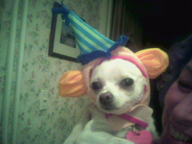 Chloe Clown