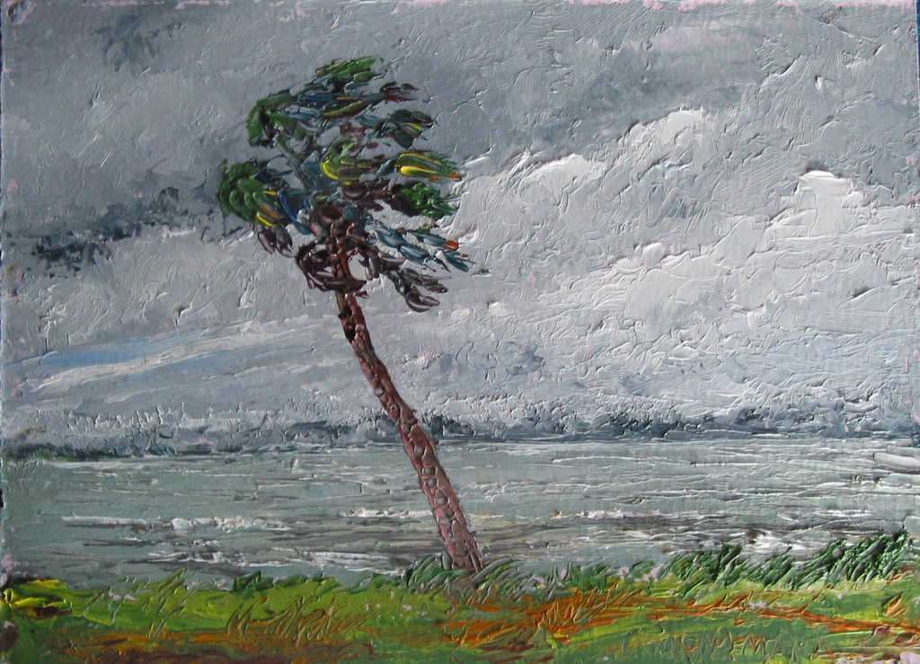 Image result for hurricane painting