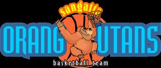 Senior Camp Basketball Logo