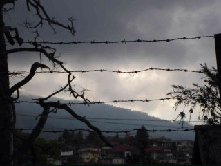 A Hazy Shade of Winter (Shillong)