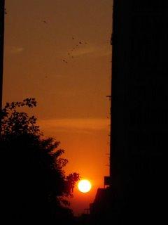 Sunset 14 January 2006 New Delhi