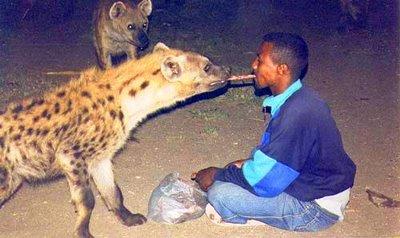 """Resultado de imagen de e """"hiena"""""""