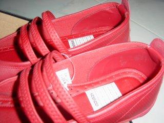 Pig Skin in Adidas Shoe??? (1/4)